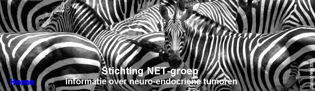 Stichting NET=groep, the NET cancer patient group from the Netherlands