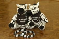 Zebra Carcinoid and Neuroendocrine Tumor Awareness Items