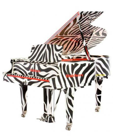 The zebra is considered the symbol for rare disease, especially carcinoid and neuroendocrince cancers.