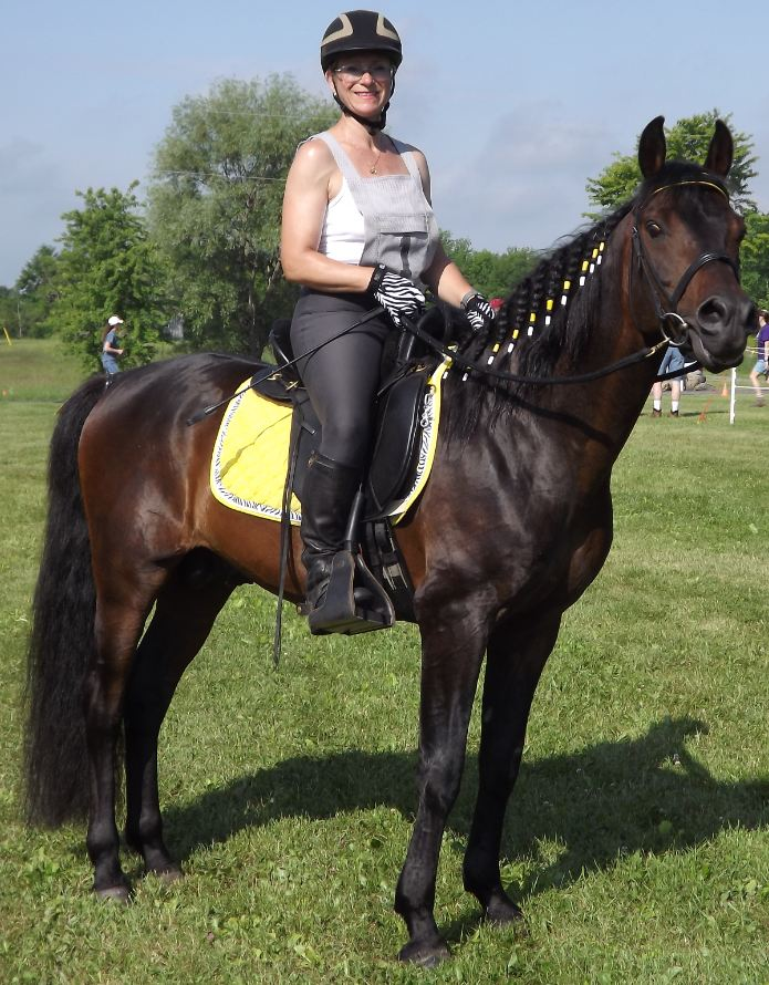 Monica Grundmann and her Morab Stallion, Excalibur Legend, raise awareness for carcinoid cancer