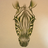 The zebra is the universal symbol for carcinoid and neuroendocrine cancer, rare disease