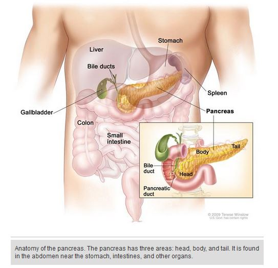 Pancreatic Neuroendocrine Tumors