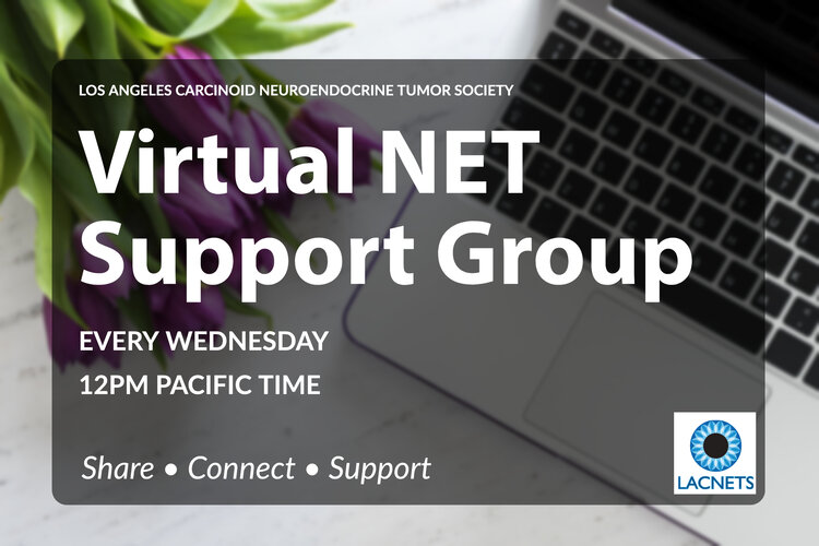 LACNETS Virtual Support Group 2020